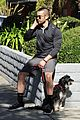 chace crawford walks his dog 04
