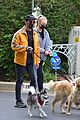 joe jonas sophie turner monday dog walk 24
