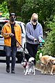joe jonas sophie turner monday dog walk 32