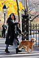 hailee steinfeld jeremy renner with lucky the pizza dog 11