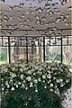 kourtney kardashian flowers from travis barker birthday 04