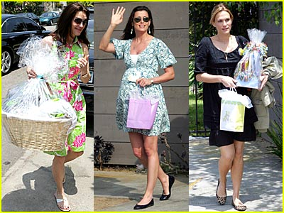 Bridget Moynahan's B-List Baby Shower