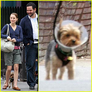 Natalie Portman: Give a Dog a Cone