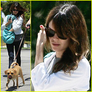 Rachel Bilson's Doggy Dog World