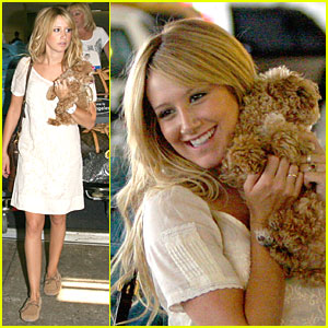 Ashley Tisdale Has Pooch Power