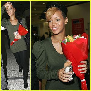Rihanna is a Koala Cutie
