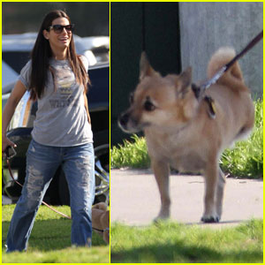 Sandra Bullock Loves Her Three-Legged Pooch