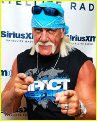 Hulk Hogan Sues Ex-Wife Linda Bollea for Defamation