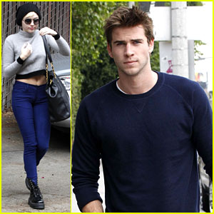 Miley Cyrus & Liam Hemsworth: Separate Business Meetings