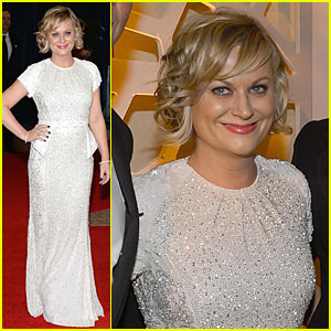 Amy Poehler - White House Correspondents' Dinner 2013 Red Carpet