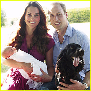 Royal Dog Lupo, Who Sadly Died, Helped Pick Prince George's Name