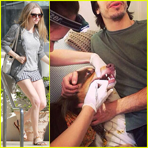 Amanda Seyfried & Justin Long Take Finn to the Doggy Dentist