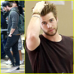 Liam Hemsworth: 'Catching Fire' Set to Surpass 'Iron Man 3' Domestically