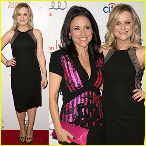 Amy Poehler & Julia Louis-Dreyfus Doll Up For Hall of Fame Gala!