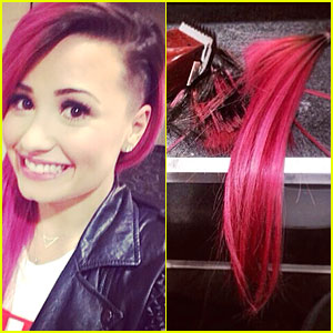 Demi Lovato Smiles Wide After Shaving Some of Her Pink Hair Off!