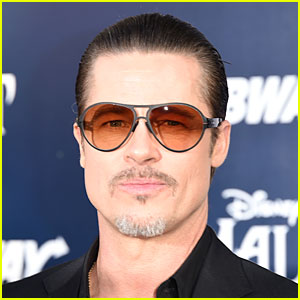 Brad Pitt Gets Punched By Prankster Vitalii Sediuk at 'Malecifent' Premiere - See Pics of Attacker