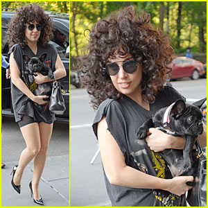 PETA Thinks Lady Gaga's Pet Pooch Asia Is Adorable Without Jewels!