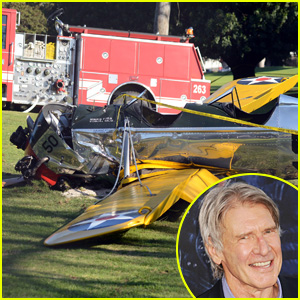 Harrison Ford Plane Crash Video: Footage Emerges of His Emergency Landing