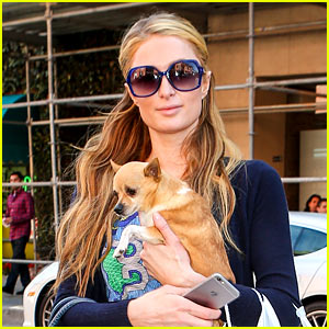 Paris Hilton Writes Heartbreaking Message After Dog Tinkerbell Dies at 1