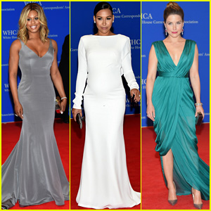 White House Correspondents' Dinner 2015 - Pics & Video!
