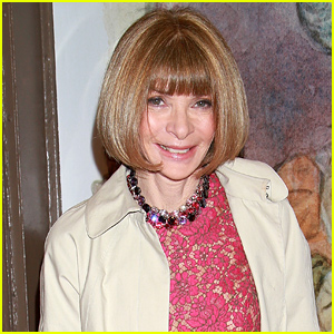 Anna Wintour Critiques Met Gala 2015 Looks in Funny Interview - Watch Now!