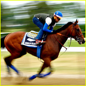 Who Won the Belmont Stakes 2015? Triple Crown Results!