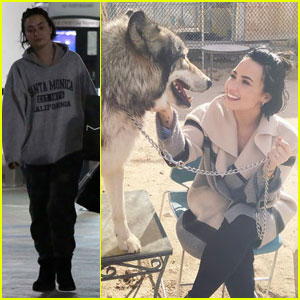 Demi Lovato Shares Sweet Message for Boyfriend Wilmer Valderrama's 36th Birthday