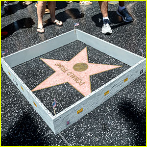 Street Artist Builds Wall Around Donald Trump's Hollywood Walk of Fame Star