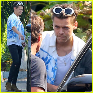 Harry Styles Steps Out for Lunch at Rande Gerber's Cafe Habana