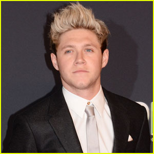 Niall Horan Responds to Fan Taking Sleeping Photo: 'This Is Unreal'