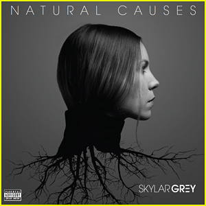 Skylar Grey Announces Sophomore Album 'Natural Causes' & 12-City Tour!