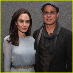 Angelina Jolie & Brad Pitt Divorce Details: 'Things Built Over Time'