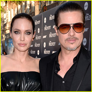 Brad Pitt's Request to Seal Custody Case Denied By Judge