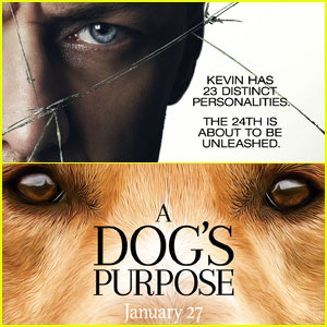'Split' Beats Controversial Film 'A Dog's Purpose' at Box Office