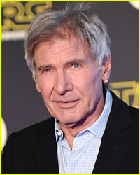 Harrison Ford 'Completely Misjudged Runway' During Airplane Incident