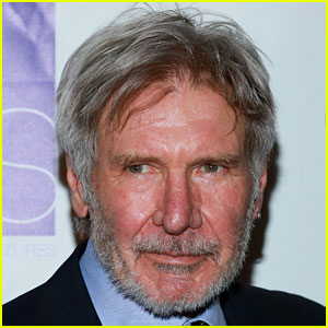 Harrison Ford's Plane Incident Investigation Delayed