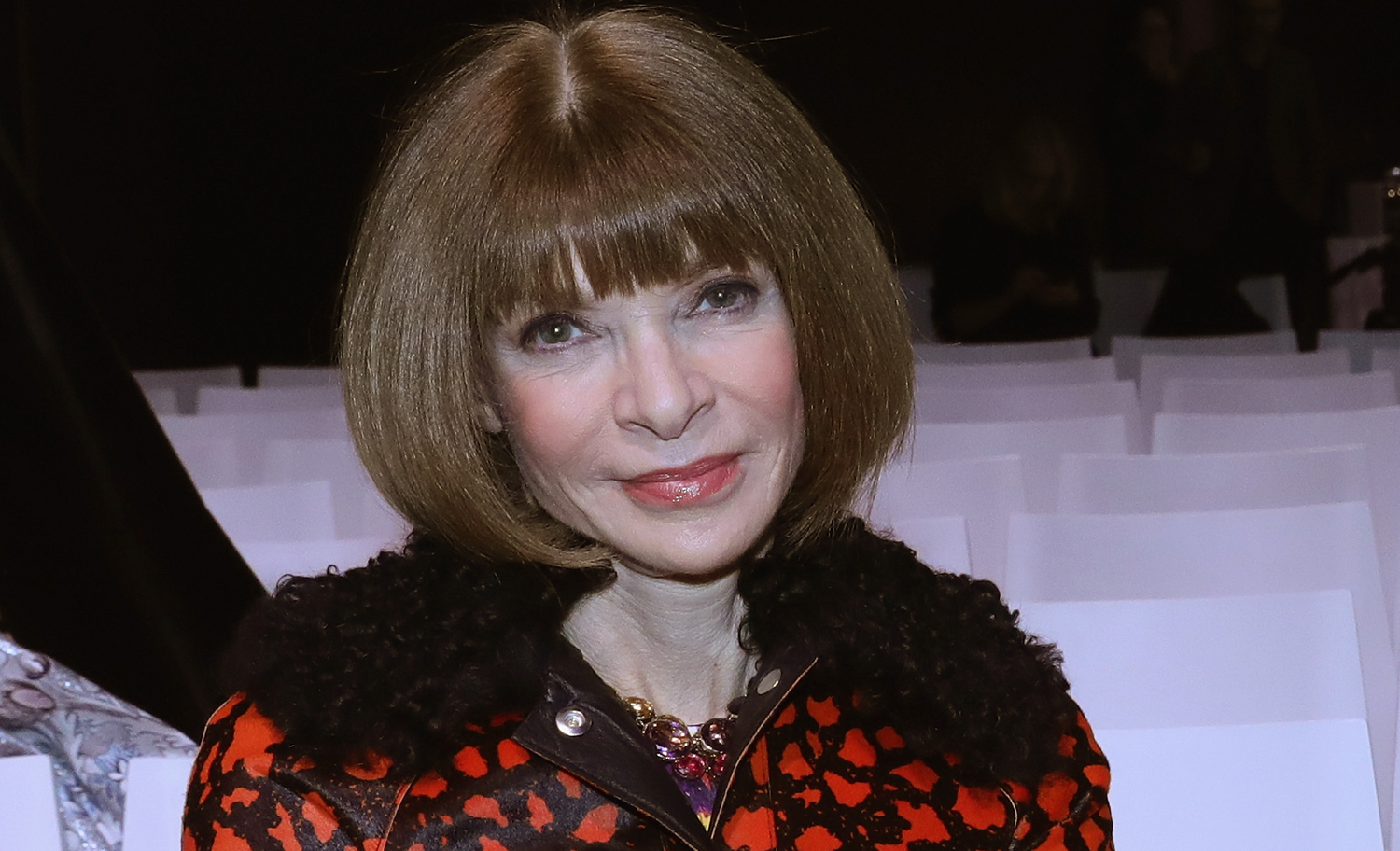 Anna Wintour Welcomes First Granddaughter!