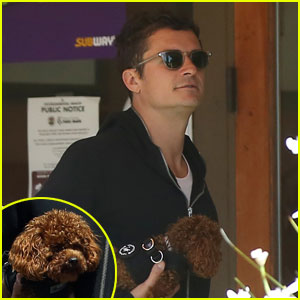 Orlando Bloom Steps Out After Ex Miranda Kerr's Wedding