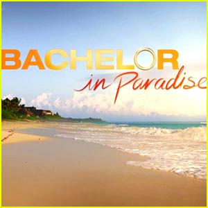 Donald Trump's Speech Interrupts 'Bachelor in Paradise,' Twitter Reacts
