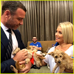 Liev Schreiber Adopts Two Dogs Displaced by Hurricane Harvey Live on Television! (Video)