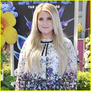 Meghan Trainor Is Writing Music for a New ABC Girl Group Drama!