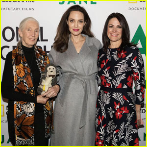 Angelina Jolie Steps Out for 'Jane' Premiere Ahead of Releasing Harvey Weinstein Statement