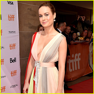 Brie Larson Tweets About Uncomfortable Experience With a TSA Agent