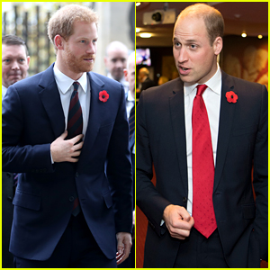 Prince Harry & Prince William Suit Up to Cheer on Rugby Teams