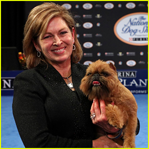 Brussels Griffon Dog Show Winner >> Who Won 'Best in Show' at the Purina National Dog Show 2017?.... : Just Jared - howlDb