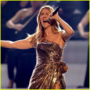 Celine Dion Kicks Off U.S. Leg of 'Courage' World Tour - See the New Set List!