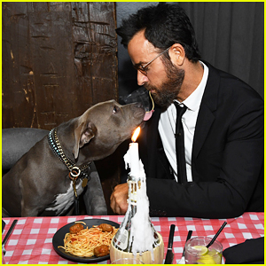Justin Theroux Recreates 'Lady & The Tramp' Spaghetti Scene with His Dog Kuma!