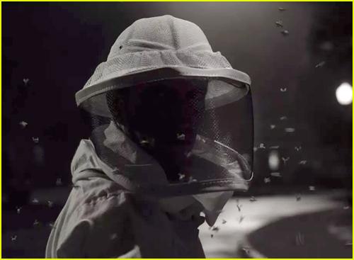 The Beekeeper in WandaVision
