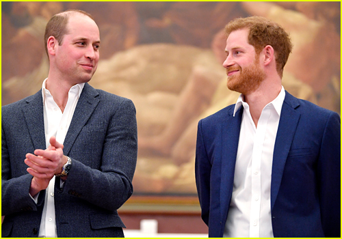 Prince William and Prince Harry smirk at each other