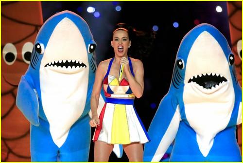Super Bowl Halftime Show Photo